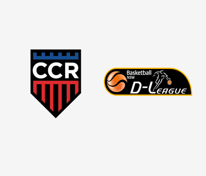 CCR Seminars at D-League 2017